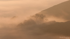 Golden Hope (David Raynham) Tags: trees cloud mist abstract colour sunrise landscape hope nikon derbyshire peakdistrict ngc telephoto inversion darkpeak castleton winnatspass d300 200mm telephotolandscape nikkor70200mmf28gvr