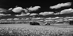 across the field and far away....(HSS) (BillsExplorations) Tags: sky blackandwhite weather clouds barn rural illinois outdoor farm barnsandfarms oncewashome sliderssunday