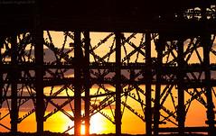 Starling Roost (Gareth Hughes Photography) Tags: sunset sun beach eos pier aberystwyth 70200 roost murmuration sturnusvulgaris aberystwythpier 1dx starlingroost canonef70200f28lisiiusm canon1dx
