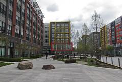 IMG_1754 (B Gull) Tags: urbanity dunloring