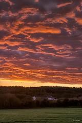 matin-13 avril (berjanic) Tags: bretagne finistère france soleil matin levant ciel red sky farm ferme cloud plouneourmenez landscapesshotinportraitformat