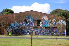 IMG_6945 (images54620) Tags: street streetart art brasil brasilia brsil brazilia masnada images54620 geraldmasnada