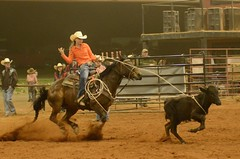 And That's All There Is to It (Get The Flick) Tags: horse georgia arena rodeo cowgirl calf breakawayroping gayga georgiahighschoolassociation qcarena
