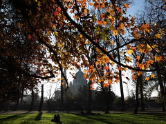 Tarde de otoo (Alonso Henrquez) Tags: chile park street parque autumn santiago color tree colors leaves canon hojas colores otoo quintanormal liquidambar parquequintanormal reginmetropolitana alonsohenrquez g1x canong1x