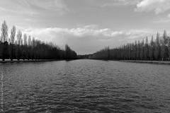 Grand canal, parc de Sceaux. Sceaux, avril 2016 (Bernard Pichon) Tags: france ledefrance antony fr bpi760