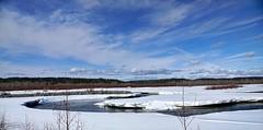 What a beautiful sight . . . (JLS Photography - Alaska) Tags: sky cloud alaska skyline river landscape landscapes frozen outdoor breakup lastfrontier alaskalandscape jlsphotographyalaska
