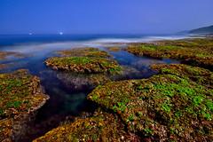 DSC_1939 (david linson) Tags: beautiful night tide taiwan