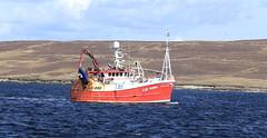 Prolific LK986 (falkirkbairn) Tags: fishing harbour shetland lerwick prolific