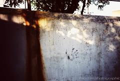 Black Hand (Mindori Photographic) Tags: film wall analog lomo lca xpro lomography crossprocessed rust lomolca slidefilm crossprocessing 365 analogue handprint agfaprecisa blackhand 32mm precisa project365 filmisnotdead 365days agfaprecisact