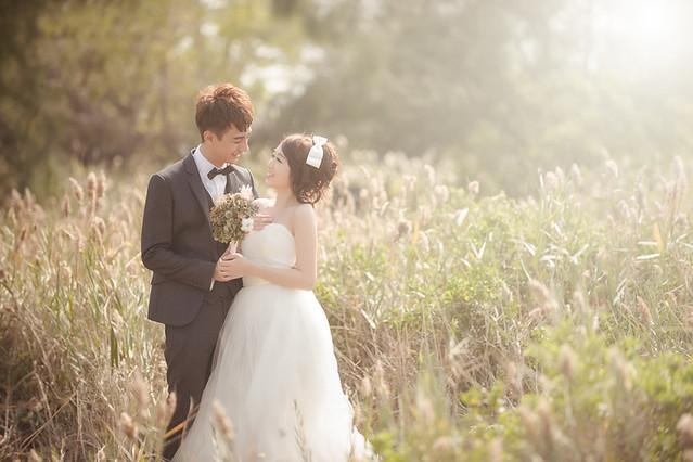 23893863223 9b2857e4ee z 台南婚紗景點推薦 森林系仙女的外拍景點