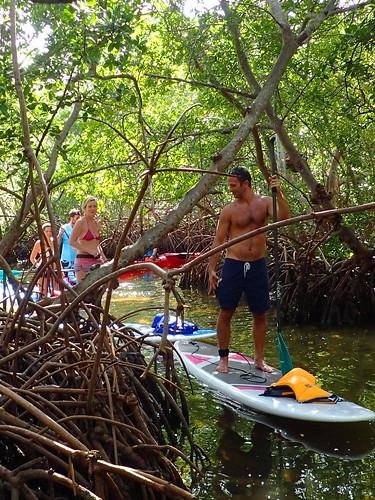 1_1_16  paddleboard tour Lido Key Sarasota FL 10