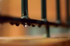 Raindrop on Railings (35mmMan) Tags: macro 50mm nikon iron dof bokeh drop raindrops dslr railings d5300