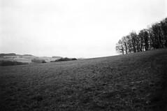wiese mit platz (fluffisch) Tags: leica film analog 35mm kodak f14 rangefinder summilux steinberg saarland leicam6 trix400 preasph messsucher summiluxm35f14 fluffisch deckenhardt