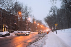 Boulevard Montpetit (tam_photographe) Tags: street winter snow canada storm evening flickr montral hiver universit freezing neige froid udem