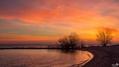 I love these mornings (BraCom (Bram)) Tags: morning cloud holland tree beach netherlands clouds strand sunrise canon reflections widescreen nederland wolken boom nl curve 169 haringvliet ochtend wolk middelharnis zuidholland goereeoverflakkee spiegeling southholland zonsopkomst bocht canonef24105mm bracom canoneos5dmkiii