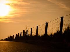 Golden Hour (@DinAFoto) Tags: shadow sun sunrise golden nordsee schatten schiffe cuxhaven northsee siel dorum wremen kugelbake alteliebe