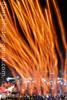 sky lantern tree 2016 火樹 (*dans) Tags: longexposure 台灣 lanternfestival lunarnewyear 平溪 天燈 pingsi yuanxiao 元宵節 2016 pingxi skylantern 平溪天燈 yuanxiaofestival 天佑台灣 skylanternfestival 平溪天燈節 天燈節 菁桐國小 孔明燈 火樹 pingxiskylanternfestival godblesstaiwan 迎財神 新北市 jingtongelementaryschool 新北市平溪天燈節 pingxiskylantern chineseingot 台南加油 pingxiskylanternfestival2016 20160211 skylanterntree 天燈樹