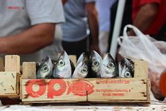 pesce2 (stgio) Tags: food fish mediterraneo market fishmarket trapani pesce