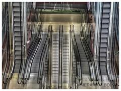 Life's ups and downs! (Cameraman_Bob) Tags: music food holland dutch ferry rotterdam lift market drink escalator smell sound local escalators hull delicacies smells daytrip boozecruise awayday tribfest hulltorotterdam