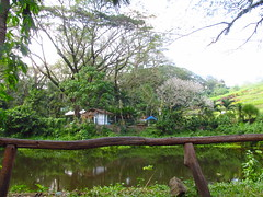 La Mesa Eco Park, PH (Janice Tepes | PH) Tags: travel trees lake travelling green nature landscape pond travels philippines wanderlust lamesa bushes wandering wander wanderer quezoncity naturephotography travelphotography greenfields landscapephotography wowphilippines yahoo:yourpictures=nature itsmorefuninthephilippines