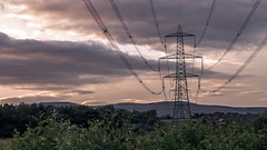 A Mad Pylon (AndyBurton90) Tags: trees boy portrait colour halloween nature boys girl cat cool friend warmth pylon saturation mysterious brooding