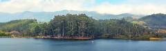 India - Kerala - Munnar - Artificial Lake - 37 (asienman) Tags: india kerala teaplantation munnar asienmanphotography