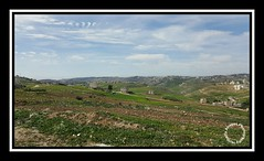 #Jordan #amman #wadi_as_sir #marj_alhamam #landscape #clouds #spring #mountains #green #galaxy_note_5 #mobilography #galaxy_note5 #note5  # #  #_ #_ # # # # # #_5 #5 # (alrayes1977) Tags: mountains green clouds landscape spring amman jordan  mobilography      note5  marjalhamam  wadiassir galaxynote5 5   5