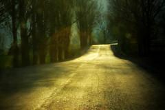 I drove your nights (Cristian Ştefănescu) Tags: road street light sun landscape drive drum outdoor strasse sonne fahren weg soare șosea