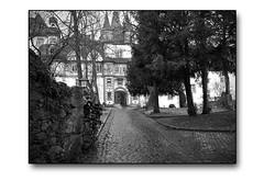 Schloss Hungen (HP-Fotografie) Tags: lumix one hessen panasonic software phase schloss wetterau hungen gx7