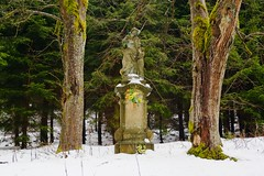 Abandoned statue in the middle of nowhere (stanislaff) Tags: old trees winter snow statue forest samsung wideangle ruined wavelet ciecam rawtherapee nx30 samsungnx1224mmf456 nx1224