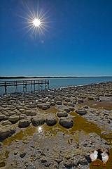 Stromatolithen in Mandurah