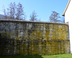 Townwall of Themar (:Linda:) Tags: germany town bluesky thuringia townwall themar