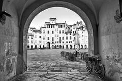 Lucca - P.zza dell'Anfiteatro (carlo tardani) Tags: blackandwhite bw lucca piazza toscana blac bicicletta blackandwhitephotos piazzadellanfiteatro platinumheartaward nikond800 bestcapturesaoi elitegalleryaoi