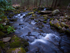 Spring Flow In Wolf Brook (Catskills Photography) Tags: longexposure nature water forest landscape spring woods stream brook odc theelements canon1022mmlens bigstopper
