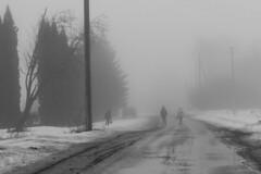 Весна в Нечаево (Pavel Gusev) Tags: вода весна туман район снег грязь тоска дымка школьник корсаково нечаево орловщина корсаковский