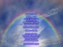 Aquile  Tanka (Poetyca) Tags: haiku image di poesia featured sfumature poetiche poetyca