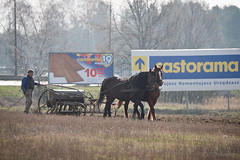 XXI Century (dziurek) Tags: old horse plant man nature work spring ancient nikon farming grain hard poland retro d750 environment farmer 300 tradition agriculture nikkor fx job cultivation pf peasant spreading sowing vintege backwardness dziurek dziurman pdziurman