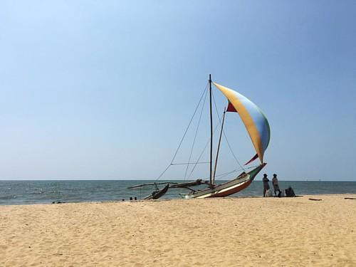 Negombo beach #negombo #srilanka #wanderjinn #wanderlust
