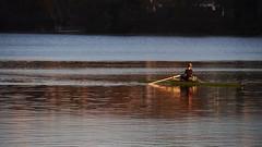 Evening rowing (mpersson60) Tags: sea boat sweden sverige solna bt hav brunnsviken