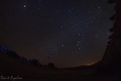 Starry Night (mad artichoke) Tags: sky night way stars outdoors israel twilight long desert south wide fisheye galaxy astronomy negev 16mm milky constellation exsposure lotz borot canoneos60d