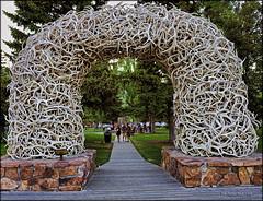 Elk Antler's (jerrywb2010) Tags: nikon wyoming jacksonhole citypark