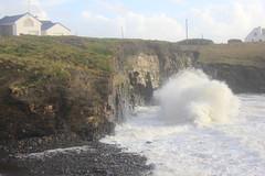 IMG_8385 (DaveGifford) Tags: ireland spanishpoint wildatlanticway