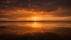 last rays (Jaco-Costerus) Tags: sunset zonsondergang goereeoverflakkee sunsetreflections melissant nikond300 slikkenvanflakkee nikkor1685mm hetsteigertje