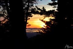 _AKU7111 (Large) (akunamatata) Tags: california sunset berkeley miller trail joaquin joachim