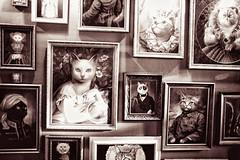 The story of one Kiev family in portraits. (kirilko) Tags: cats monochrome sepia kiev kyiv  felidae porttraits canoneos5d  sigma28mmf18exdgasphericalmacro
