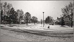 Snowing ... again (Peter_Cameron) Tags: olympusep1 olympus9mmf8fisheye