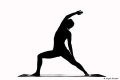 w-Ellie-3 (thirsty_camel) Tags: silhouette yoga flow practice yogateacher yogasilhouette