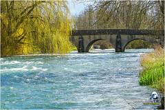 """Gommville la Seine """"2016"""" (Christian Labeaune) Tags: france villages paysages laseine 2016 chtillonnais bourgognectedor gommville chatillonsurseine21400 christianlabeaune"""