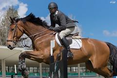 CCVM Wild Cards 16-04-16 (Myprofe) Tags: madrid horse rain lluvia outdoor salto countryclub rider equestrian showjumping hipica wildcards saltodeobstculos clubdecampovillademadrid ccvm saltodecaballo campeonatodesalto