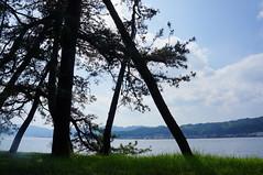 Amanohashidate (jbilnoski) Tags: blue trees sea cloud tree beach nature water japan pinetree pine clouds outdoors bay kyoto asia view sandbar explore risingsun amanohashidate eastasia miyazu kyotoprefecture miyazubay
